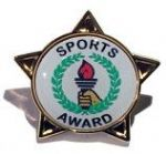 SPORTS AWARD - STAR Lapel Badge